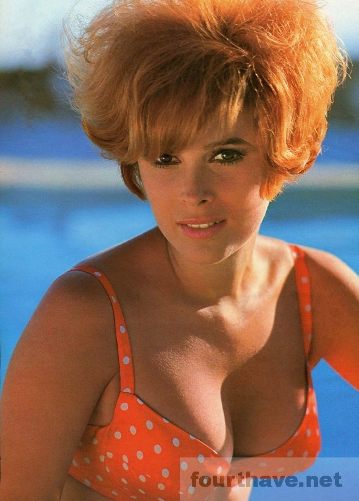 Jill St. John she knows where you are looking